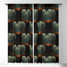Desert of potted cacti at night Blackout Curtain