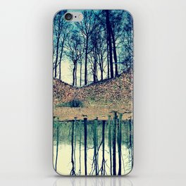 Reflection in the Wood iPhone Skin