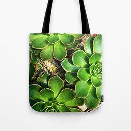 3 Succulents Tote Bag