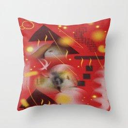 Homage to Balzac n.12 Throw Pillow
