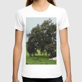Old Cork Oak Tree Meadow T-shirt