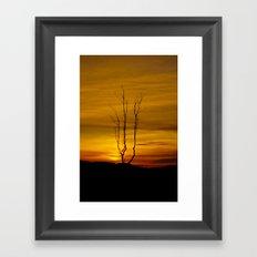 Lone tree sunset Framed Art Print