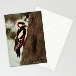 Kuhnert, Friedrich Wilhelm (1865-1926) - Wild Life of the World 1916 v.1 (Spotted Woodpecker) Stationery Cards