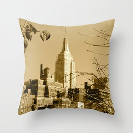 View From a Roof Top Throw Pillow