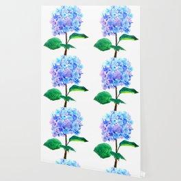 blue purple hydrangea Wallpaper