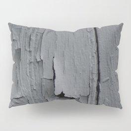 Aging Wall Pillow Sham
