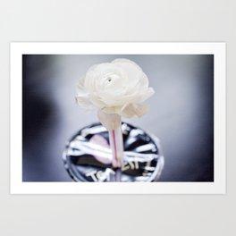 Tea flower Art Print