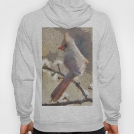 Abstract Colorful Wild Bird Cardinal Painting Hoody