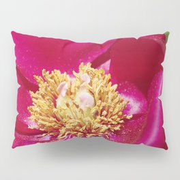 Peony Scarlet O'Hara - Red Satin with Gold Dust Pillow Sham