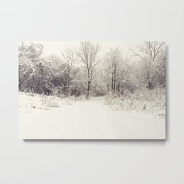 white world Metal Print