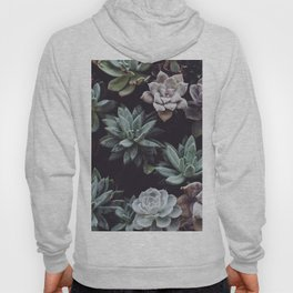 Dreamy succulents Hoody