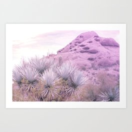 Prickly in Pink III Art Print