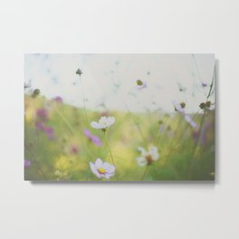 . cosmos are love . Metal Print