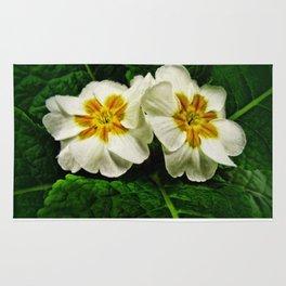 White Primrose at Barthels Farm Market Rug