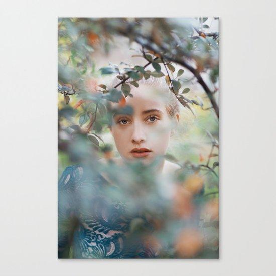 Through leaves Canvas Print