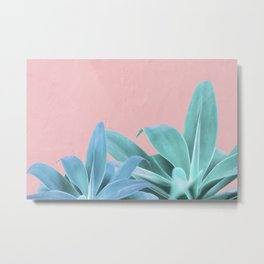 Blue Green Agave Metal Print