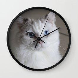 Ragdoll Cat Blue Eyes Wall Clock