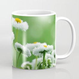 Daisy Flowers 094 Coffee Mug