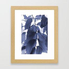 Leaves V Framed Art Print
