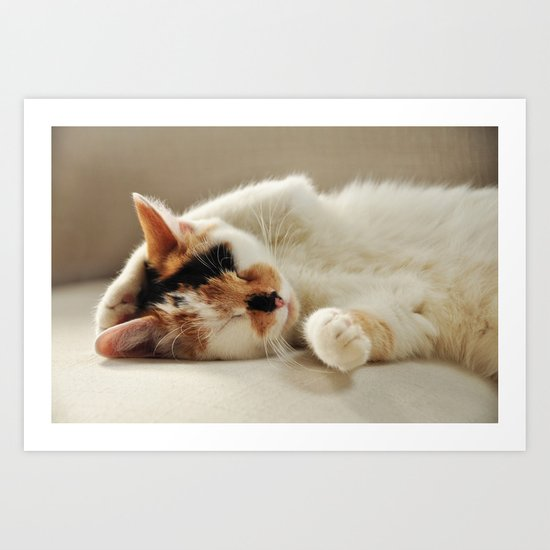 Sunday Feline Art Print