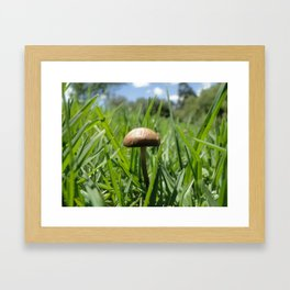 sunny mushroom Framed Art Print