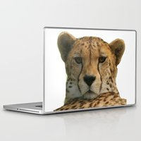 cheetah Laptop & iPad Skins featuring Cheetah by Sean Foreman