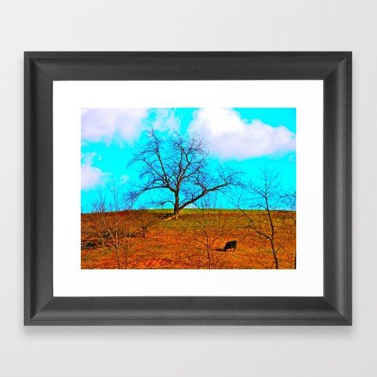One Black Cow Framed Art Print