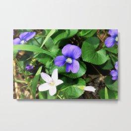 Violet 05 Metal Print