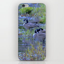 Geese in the Reeds iPhone Skin
