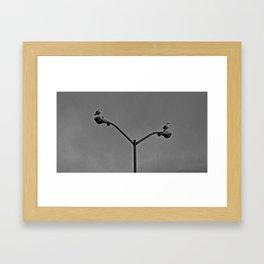 Symmetry of Seagulls Framed Art Print