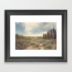 In search of Ansel Framed Art Print