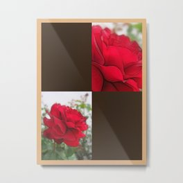 Red Rose Edges Blank Q3F0 Metal Print