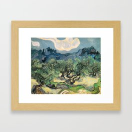 Vincent van Gogh, Olive Trees. Framed Art Print