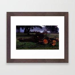 8666 Framed Art Print