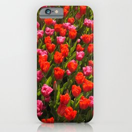 Red and pink tulips I Nature I Garden I Keukenhof I Photography iPhone Case