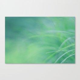 Tropical NO3 Canvas Print