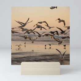 Seagull Birds Flying at Sunset on the Beach in California Photography, Beach Art, California Coast Home Decor, Fine Art Photography Mini Art Print