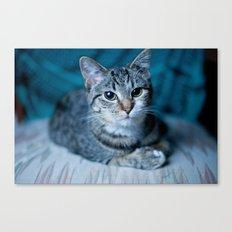 lover cat Canvas Print