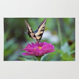 Tiger Swallowtail Rug