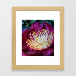 Thirst to Leave the Past Framed Art Print