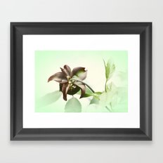 Dainty Framed Art Print