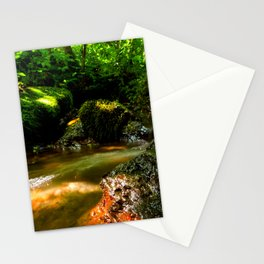 Fresh water source in the summer forest Stationery Cards