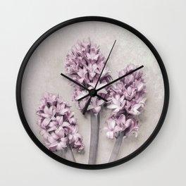 Beautiful Pink Hyacinths Wall Clock