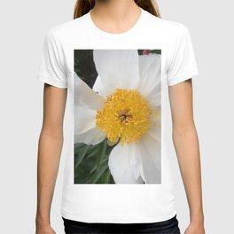 White Beauty by Teresa Thompson T-shirt