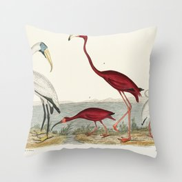 a handcolored wood ibis and scarlet flamingo Throw Pillow