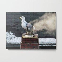 Smokey Seagull Metal Print