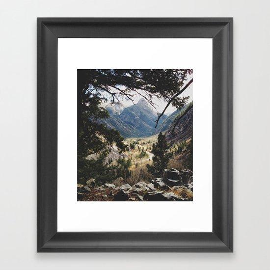 San Juan Forest Framed Art Print