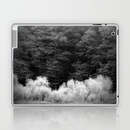 The Forest Keeps Secrets Laptop & iPad Skin