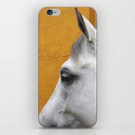 Cleo - Fine art horse print iPhone Skin