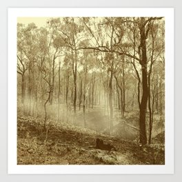 Stunning view of bushfire aftermath Art Print